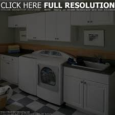Small Picture White Kitchen Cabinets Home Depot voluptuous