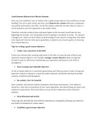 Perfect Resume Objective Best Of Good Work Objectives For A Resume Choice Image Resume Format