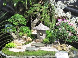 Small Picture Dish Garden Filipino Dish Garden Mesteva90 Flickr Dish Gardens