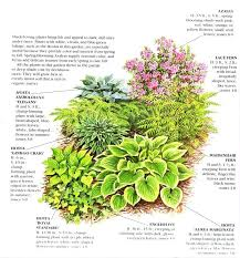 Small Picture 35 best Shade Gardens images on Pinterest Shaded garden Shade