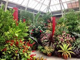 the orangerie at tower hill botanical gardens boylston ma