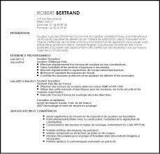 Usa Jobs Resume Adorable Usajobs Resume Writing Service Tips Sample Pour Samples Federal Job