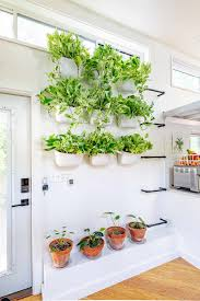 How to transform your bathroom into the ultimate home spa getaway. How To Display Houseplants 98 Of Our Favorite Plant Display Ideas Apartment Therapy