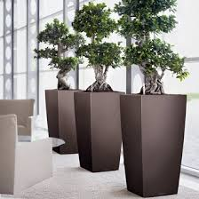 office planter. Office Planters Click To Enlarge Planter T