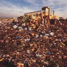 land pollution essay rubbish theory the creation and destruction of value soil pollution landfills