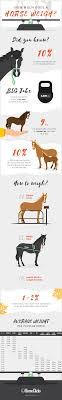 Miniature Horse Weight Chart How Much Does A Horse Weigh Horseclicks