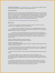 Resume Summary Vs Objective Lovely 9 10 What Goes In A