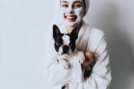 can dogs get pimples understanding dog