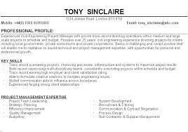 Resume Profile Inspiration Sample Resume Profile Statements Also Examples Of Profile Statements
