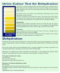Urine Color And Clarity Chart Color Chart 10 Free Word Pdf Documents Download Free