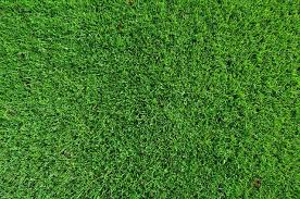 Installing Artificial Turf 4 Ways Your Family Can Enjoy More Savings