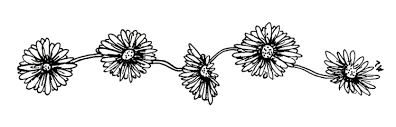 tumblr transparents black and white flowers. Modren Tumblr Blackandwhiteflowerstumblrtransparent12png For Tumblr Transparents Black And White Flowers A