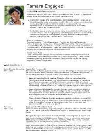 Resume Examples By Real People Senior Engagement Manager Resume
