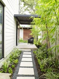 SQUEEZE PLAY: Landscape architect Rita Hodge added tall black bamboo and  lower-growing perennials