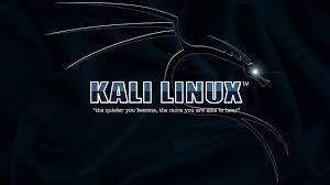 Kali Linux 3D Wallpapers - 4k, HD Kali ...