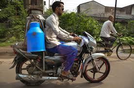 n milkman albany kid family travel n milkman