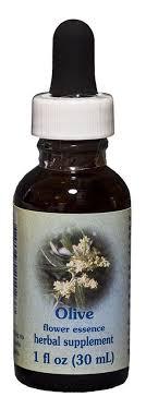 olive dropper 1 oz by flower essence