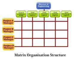 Organisation And Behaviour Ferdousliza
