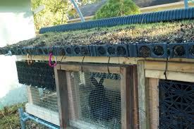 jack s green roof hutch