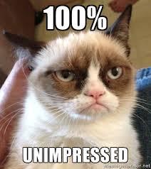 100% Unimpressed - Grumpy Cat 2 | Meme Generator via Relatably.com