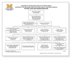 Cde Org Chart Nursing At Michigan Leadership