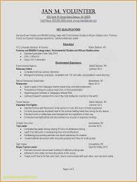 Resume Example Of Teacher New Template Free Contemporary Teaching