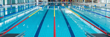 olympic swimming pool lanes. Pool_wholesale Pool Tiles_1 Olympic Swimming Lanes