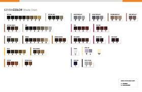 Kenra Color Chart Kenra Color Salon Success Limited