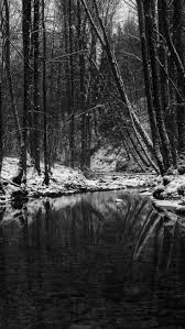 800x1420 wallpaper wood stream snow trees black and white