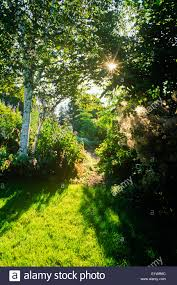 Perennial Pleasures Landscape Design Pleasures Garden Stock Photos Pleasures Garden Stock