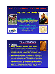 EQUINE ZOONOSES