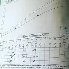 Growth Scan Chart 36 Best M Y P R E G N A N C Y Images 20 Week Scan 26