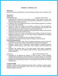 Audit Resume Free Resume Example And Writing Download