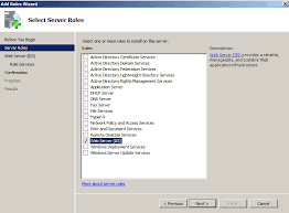 Setting The Required Iis Roles On Windows 2008 Server