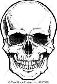 Skull Illustrations And Clip Art 45786 Skull Royalty Free