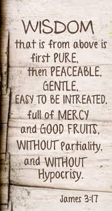 Quotes About Wisdom Adorable Quotes About WisdomBut The Wisdom From Above Is First Of All Pure
