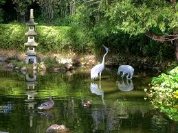 garden cranes. These Feathered Metal Cranes Can Be Found In The Koi Pond Of Japanese Tea Garden Golden Gate Park San Francisco. T