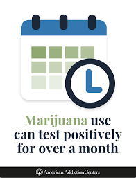How Long Does Marijuana Stay In System Chart How Long Does Pot Stay In Your System