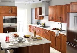 Ikea Wood Kitchen Cabinets Kitchen Ikea Galley Kitchen Roasting Pans Roaster Convection
