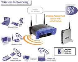 answer  wireless lan