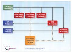 Nintendo Organizational Chart 15 Best It Organizational Structure Images Organizational