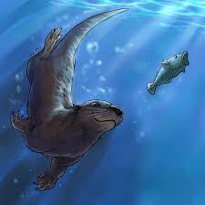 Image result for river otters swimming