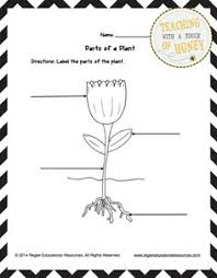 Small Picture Fall Science Journals Kindergarten Plants and School