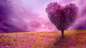 spring nature backgrounds. Spring Nature Backgrounds T