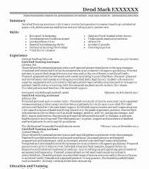 Recruiter Resume Examples Cool Staffing Recruiter Resume Sample Fresh Recruiter Resume Examples