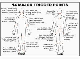 Muscle Pressure Points Chart 38 Conclusive Trigger Points Chart Free Download