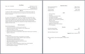 2 Page Resume Format