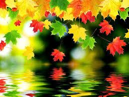 69+] Beautiful Autumn Wallpaper on ...