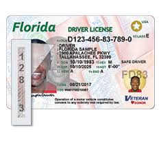 Florida's Department Card - License Vehicles New Driver Of Id Motor Highway Florida And Safety