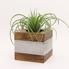 office planter boxes. Small Wood Succulent Planter Pot, Modern Cube Plant Holder, Indoor Garden Box, Office Boxes